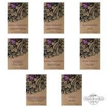 Winter Vegetable Varieties - Seed kit gift box #4