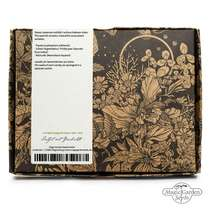 Cacti assortment - seed kit gift box #1