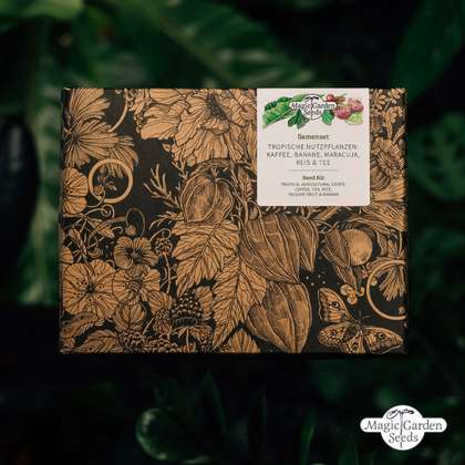 Tropical Agricultural Crops: Coffee, Tea, Rice, Passion Fruit & Banana - Seed kit gift box