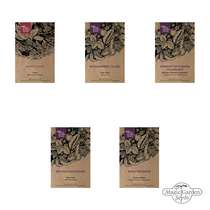 Strawberries, Onions & Chives - Seed kit gift box #2