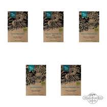 Flowering Beauties For The Shade (Organic) - Seed kit gift box #2