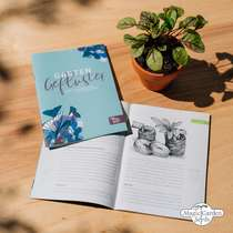 Flowering Beauties For The Shade (Organic) - Seed kit gift box #5