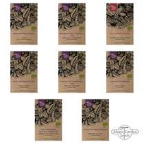 Light Feeder Vegetables For A Raised Bed (Organic) - Seed kit gift box #2