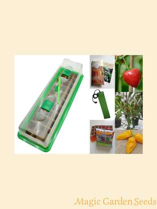 Chili cultivation set (heated):' Professional - African chili cultivars', 3 special varieties of chili seeds for the African / Arabic cuisine with propagator, heating mat & sowing accessories