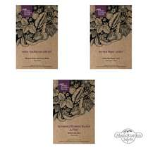 'Native American sweet corn/ maize' seed kit #1