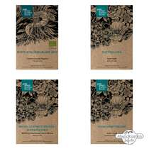 Early Spring Flowers - Seed kit #1